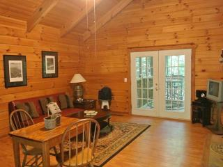 Mountopia Cabin - Helen vacation rentals