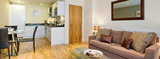 Canary Wharf 01 Bedroom Apartment - London vacation rentals