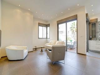 Stunning 3br apartment for rent or sale - Tel Aviv vacation rentals