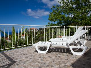 House in Arco da Calheta with sea view - Gaula vacation rentals