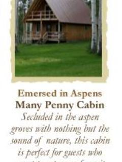 Many Penny Cabin - Somerset vacation rentals