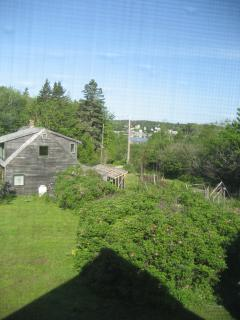 Secluded Cottage, Bass Harbor, Acadia Nat Park, ME - Bass Harbor vacation rentals