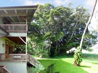 Tropical Paradise at the Oceanview Banyan House with wraparound lanais - Kapaau vacation rentals