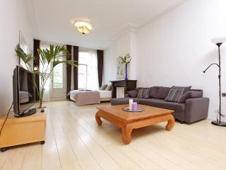 Vondelparkhouse - Holland (Netherlands) vacation rentals