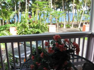 Dolphin Cottage @  Kehena Beach, Hawaii - Pahoa vacation rentals