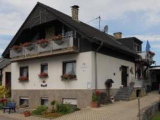 Vacation Apartment in Mehring (Rhineland-Palatinate) - 377 sqft, comfortable, natural, winery (# 3979) - Rhineland-Palatinate vacation rentals