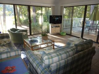 600,seapines,pool,golf disc,bikes,walk beach,WIFI - Sea Pines vacation rentals