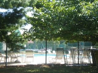 APARTMENT CLOSE TO RUTGERS - Highland Park vacation rentals