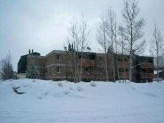 Ten Mile Creek ~ RA4225 - Breckenridge vacation rentals