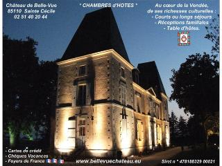 Bed and Breakfast near Puy du Fou - Saint-Vincent-Sterlanges vacation rentals