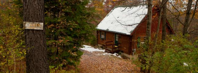Secluded, Pet-Friendly, Relaxing Log Cabin (Wifi)