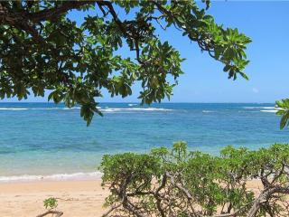 Hale Makai-BEACHFRONT, AC IN Bedrooms! - Anahola vacation rentals
