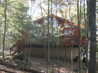 Comfortable mountain home - Lackawaxen vacation rentals