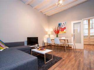 Laietana Gothic Deluxe A - Catalonia vacation rentals