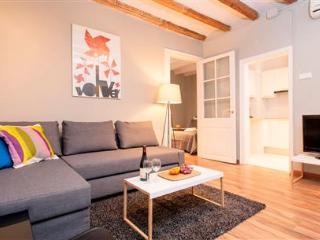 Laietana Gothic Apartment A - Catalonia vacation rentals
