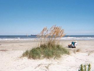 Lighthouse Point Rental 34A - Southern Georgia vacation rentals