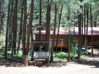 Tall Pines Cabin at the Elk Mountain Lodge, LLC - Jemez Springs vacation rentals