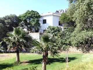 Betis House relaxed in Natural Park - Tarifa vacation rentals