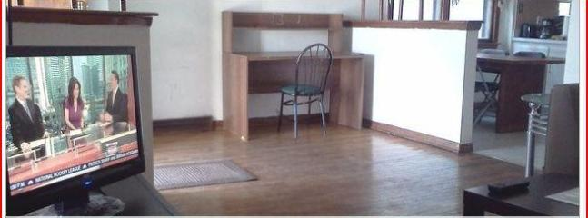 Large house for whole family - Best Deal! House.Parking.CTA .10 min fr Downtown. - Chicago - rentals