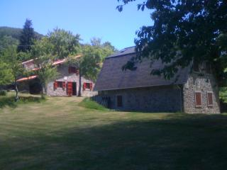 LAST MINUTE Holiday House Casini di Corte in the greenary Park of Orecchiella - San Romano in Garfagnana vacation rentals
