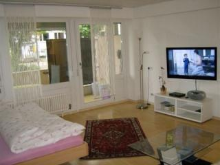 Vacation Apartment in Freiburg im Breisgau - 388 sqft, central, friendly, comfortable (# 4019) - Black Forest vacation rentals