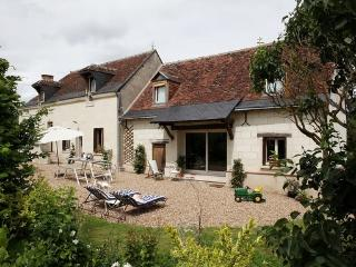 CHARMING 17TH HOUSE CLOSE TO LOIRE VALLEY HISTORIC CASTLES AND VINEYARDS. - Indre-et-Loire vacation rentals