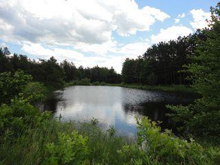 Single Cabin on 120 Arces with Pond by Dells - Wisconsin vacation rentals