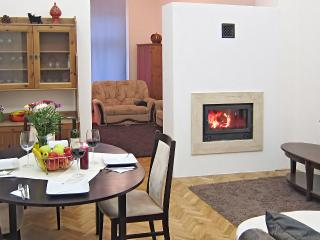 Elegant Fireplace Holidays, downtown, free WiFi! - Budapest & Central Danube Region vacation rentals