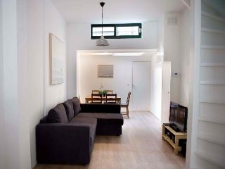 AMS Two bedroom in Leidseplein Area - Key 1118 - Holland (Netherlands) vacation rentals