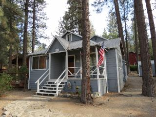 silverbear wrightwood cottage - Wrightwood vacation rentals