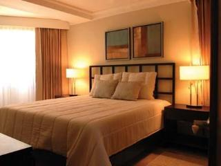 1Bedroom Royal suite -New *  All inclusive 55$ - Puerto Plata vacation rentals