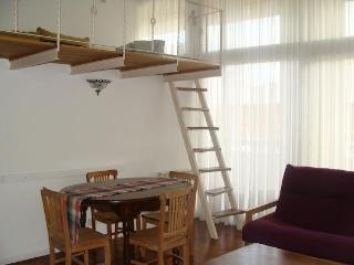 Huge and comfortable Loft - Palermo 4PAX - Buenos Aires vacation rentals
