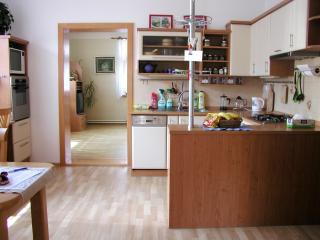 Lovely 3BD house in Brno ♫♪  summer at the lake ♫ - Moravia vacation rentals