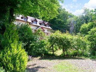 PENFFYNNON, detached cottage in idyllic woodland setting, stream, wildlife, Newcastle Emlyn Ref 16665 - Newcastle Emlyn vacation rentals