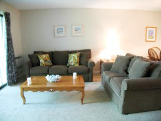 Ocean Edge Street Level:  2 Bedrooms with A/C & pool access - EA0527 - Brewster vacation rentals