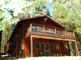 (1S) Cecil's Cabin - Yosemite National Park vacation rentals