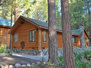 (66) Grizzly Giant - Yosemite Area vacation rentals