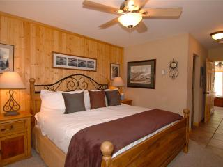 Luxury Condo - On River, In Town - Ski In/Ski Out - Telluride vacation rentals