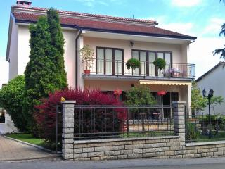 Apartment in Pazin - Pazin vacation rentals