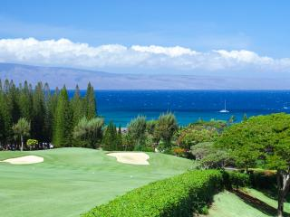 Sunset/Molokai/Lanai Ocean Views! - Kapalua vacation rentals