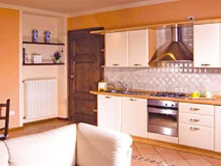 Apartment Guido - Pettenasco vacation rentals