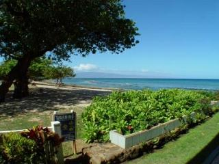 Hale Kai #103 - Your Home by the Sea in West Maui - Lahaina vacation rentals