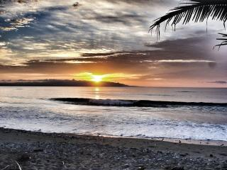 Adorable Surfer's Beach House in Costa Rica - Osa Peninsula vacation rentals