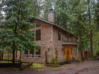 Eagle Falls lodge - Rhododendron vacation rentals