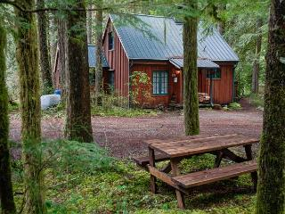Fernwood Cottage - Rhododendron vacation rentals