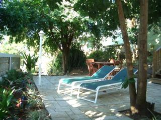 2 BR HOUSE , BEAUTIFUL PRIVATE PATIO, WIFI, AND ONSITE MASSAGE THERAPIST - Vega Baja vacation rentals