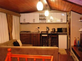Feel Like Home Pashas House No:3 - Istanbul vacation rentals
