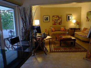 Sun,free and freedom 15mn from Lisbon center - Carcavelos vacation rentals