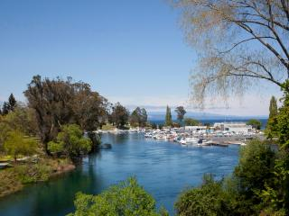 Watermark Harbourside Villa - Qualmark 4 Star - Taupo vacation rentals