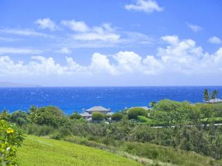 Golf and Ocean View Retreat in Kapalua/Discount Golf! - Kapalua vacation rentals